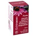 Optima echinacea estratto fluido forte 50ml